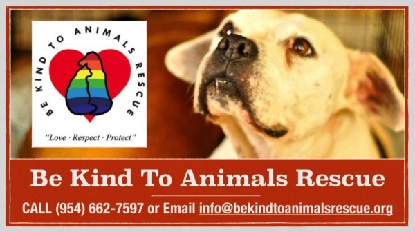 Be Kind to Animals Rescue